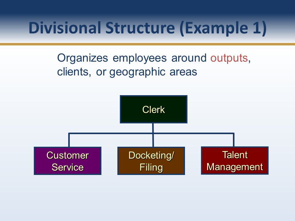 Divisional Structure (Example 1)