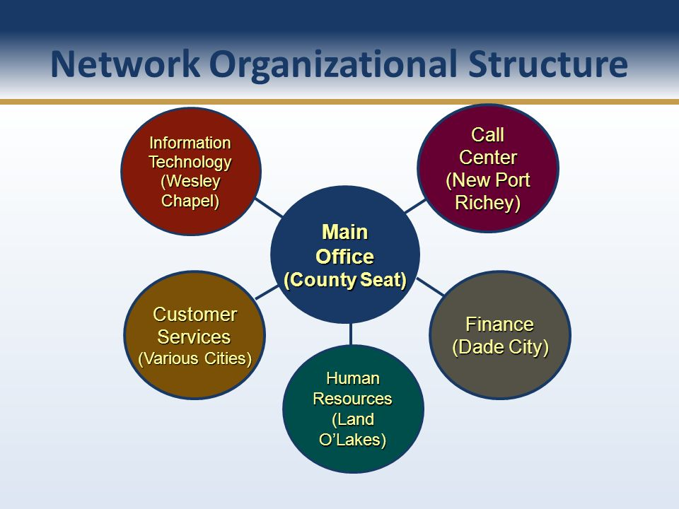 Network Organizational Structure