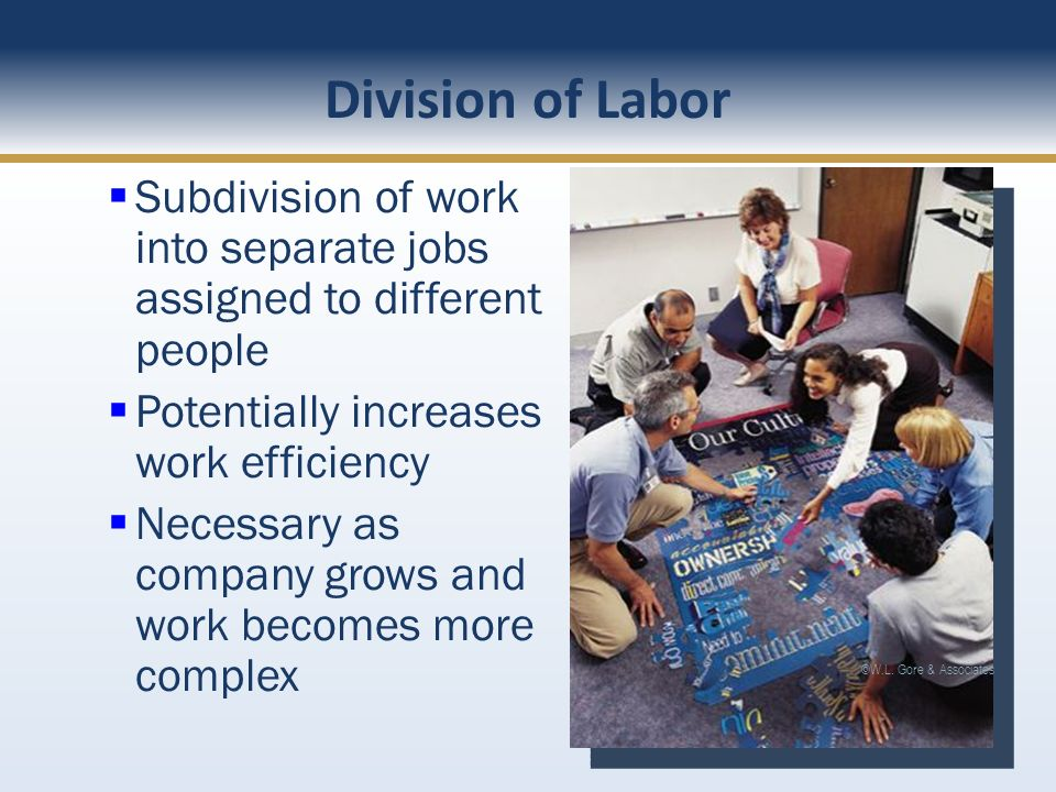 Division of Labor Subdivision of work into separate jobs assigned to different people. Potentially increases work efficiency.