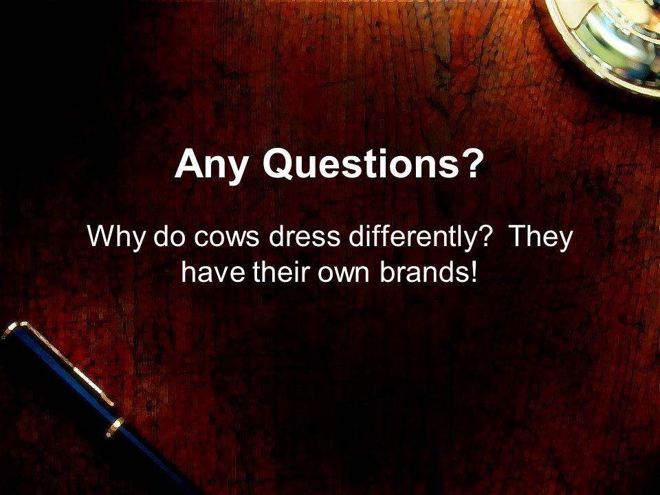 Why do cows dress differently They have their own brands!