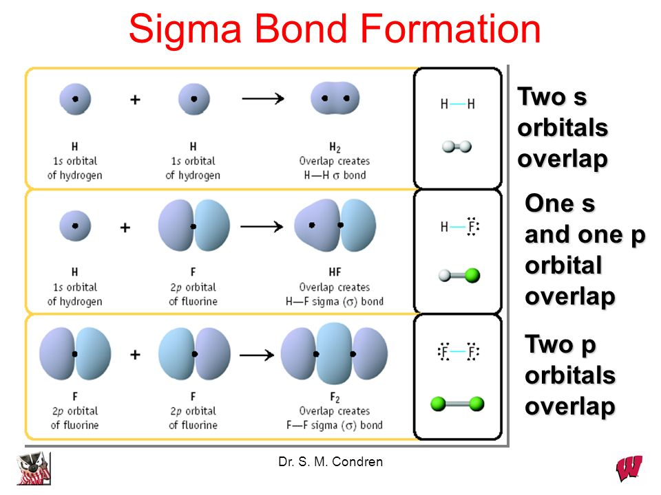 Sigma Bond Formation Two s orbitals overlap One s and one p orbital