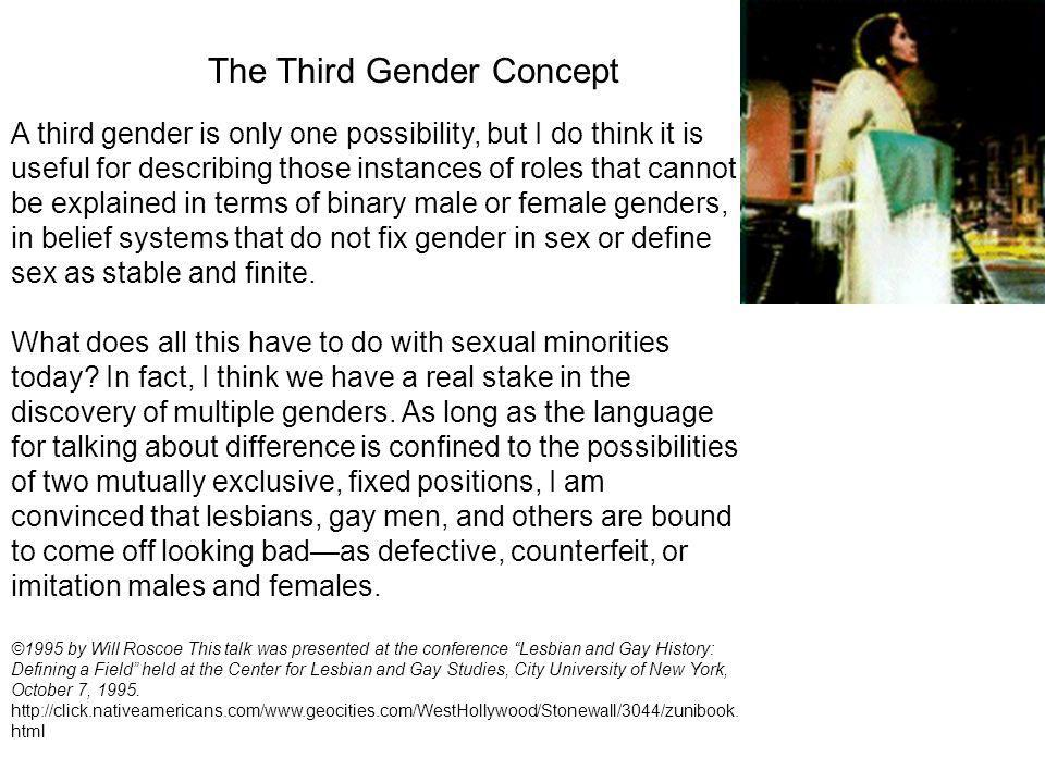The Third Gender Concept