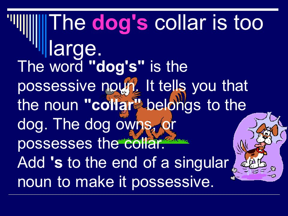 The dog s collar is too large.
