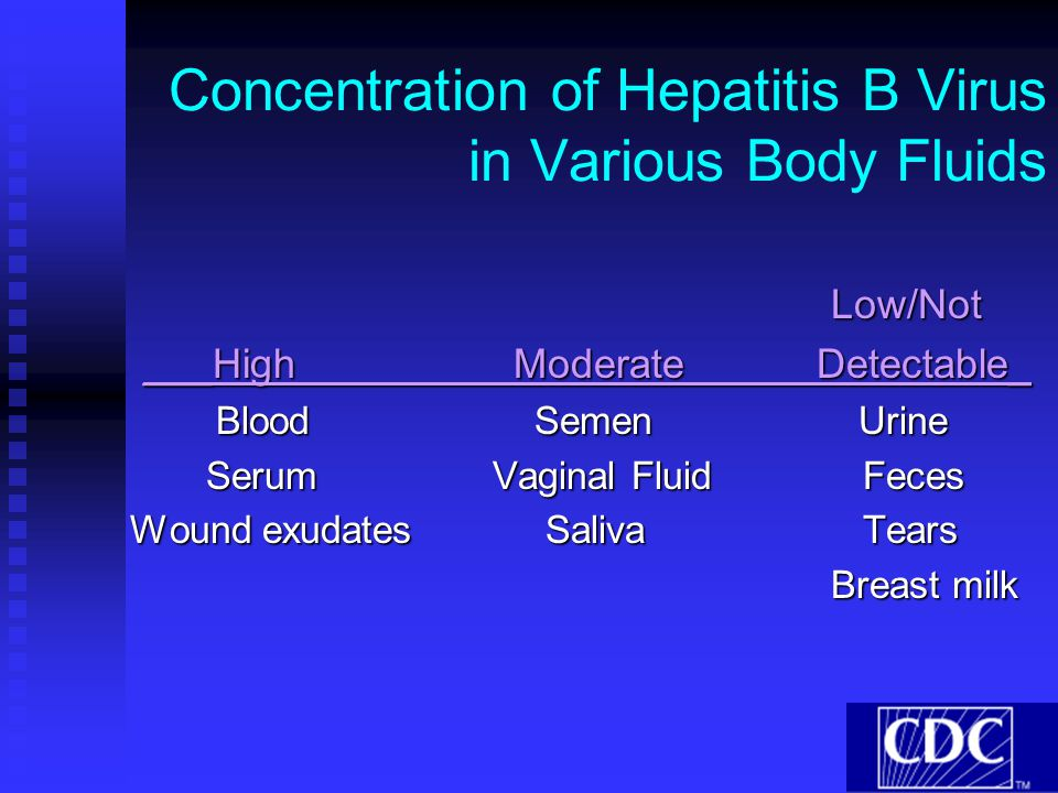Concentration of Hepatitis B Virus in Various Body Fluids
