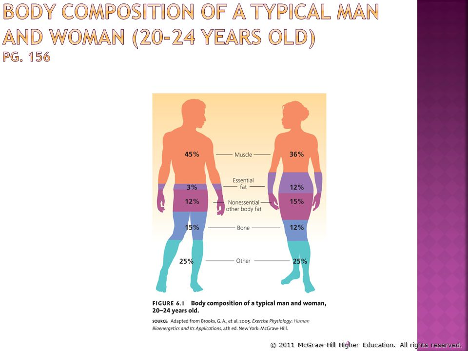 Body Composition of a Typical Man and Woman (20-24 Years Old) Pg. 156