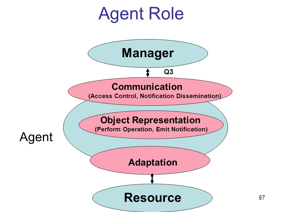 Agent Role Manager Agent Resource Communication Object Representation