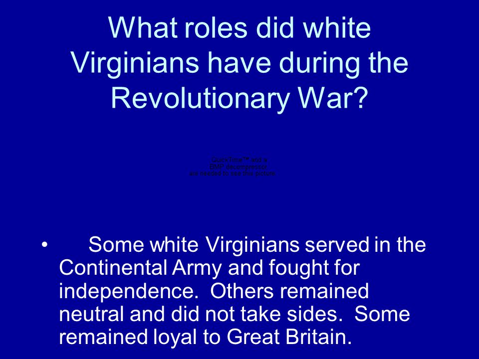What roles did white Virginians have during the Revolutionary War