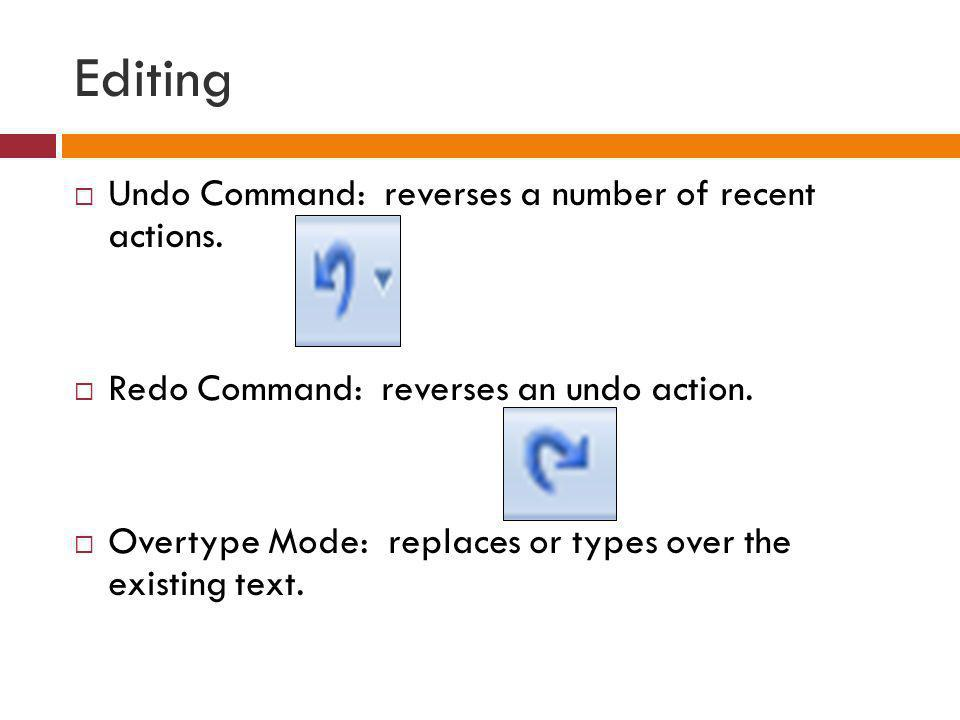 Editing Undo Command: reverses a number of recent actions.