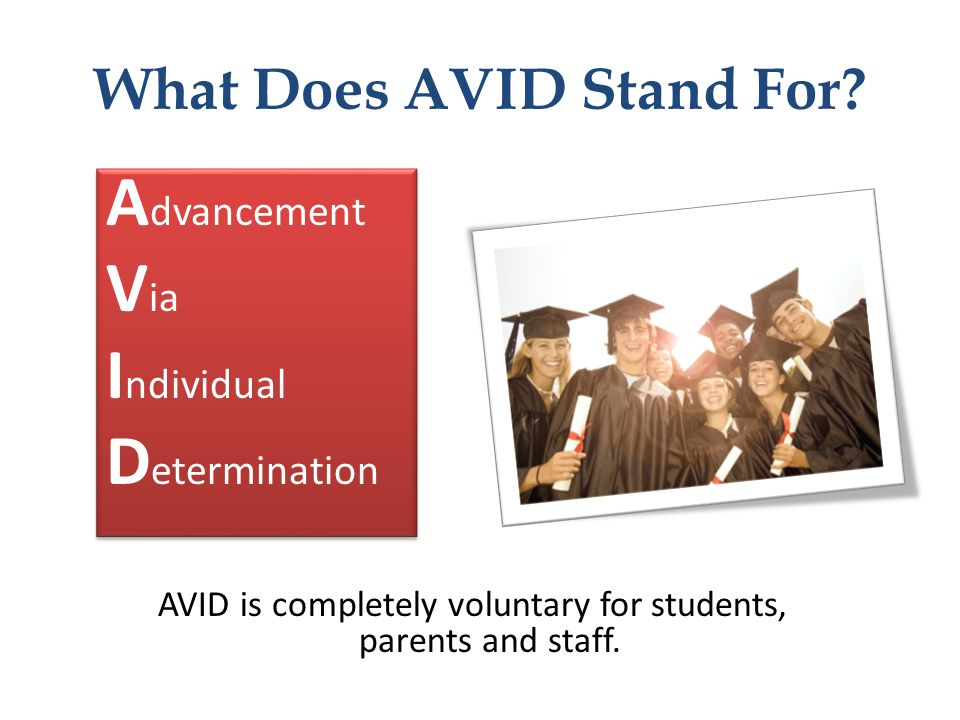 What Does AVID Stand For
