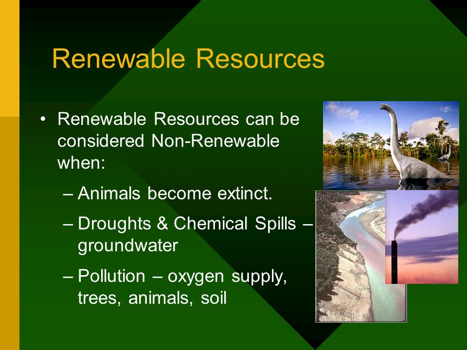 Renewable Resources Renewable Resources can be considered Non-Renewable when: Animals become extinct.