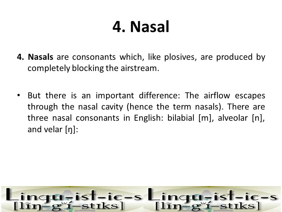 4. Nasal 4. Nasals are consonants which, like plosives, are produced by completely blocking the airstream.