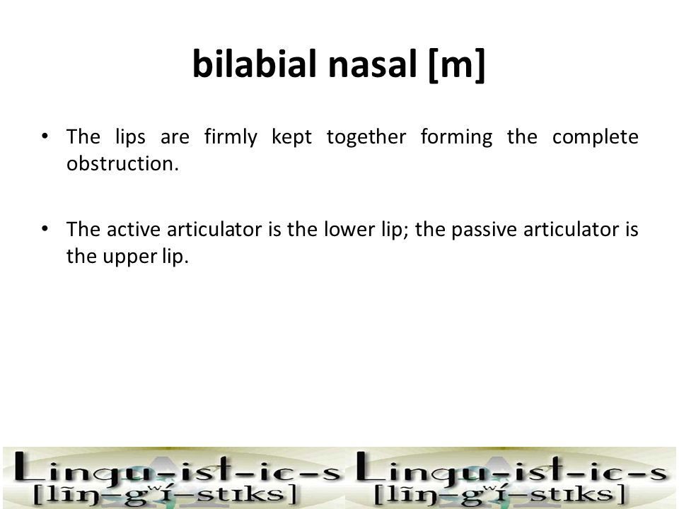 bilabial nasal [m] The lips are firmly kept together forming the complete obstruction.