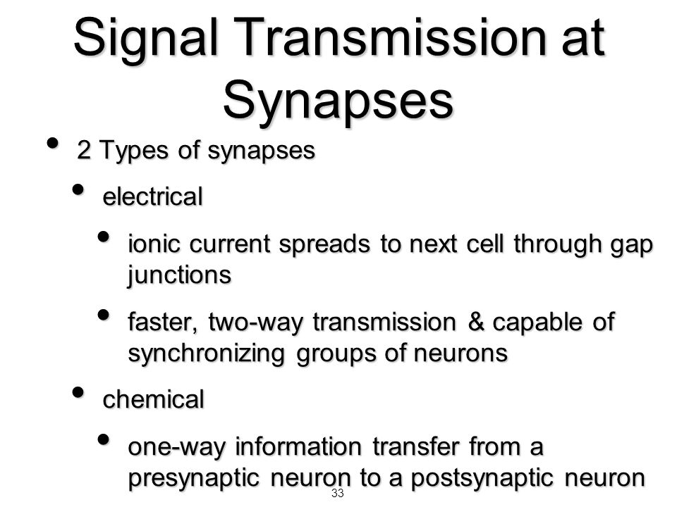 Signal Transmission at Synapses