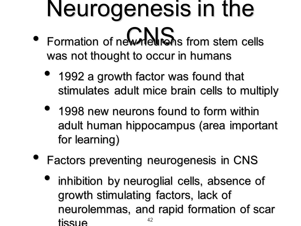 Neurogenesis in the CNS