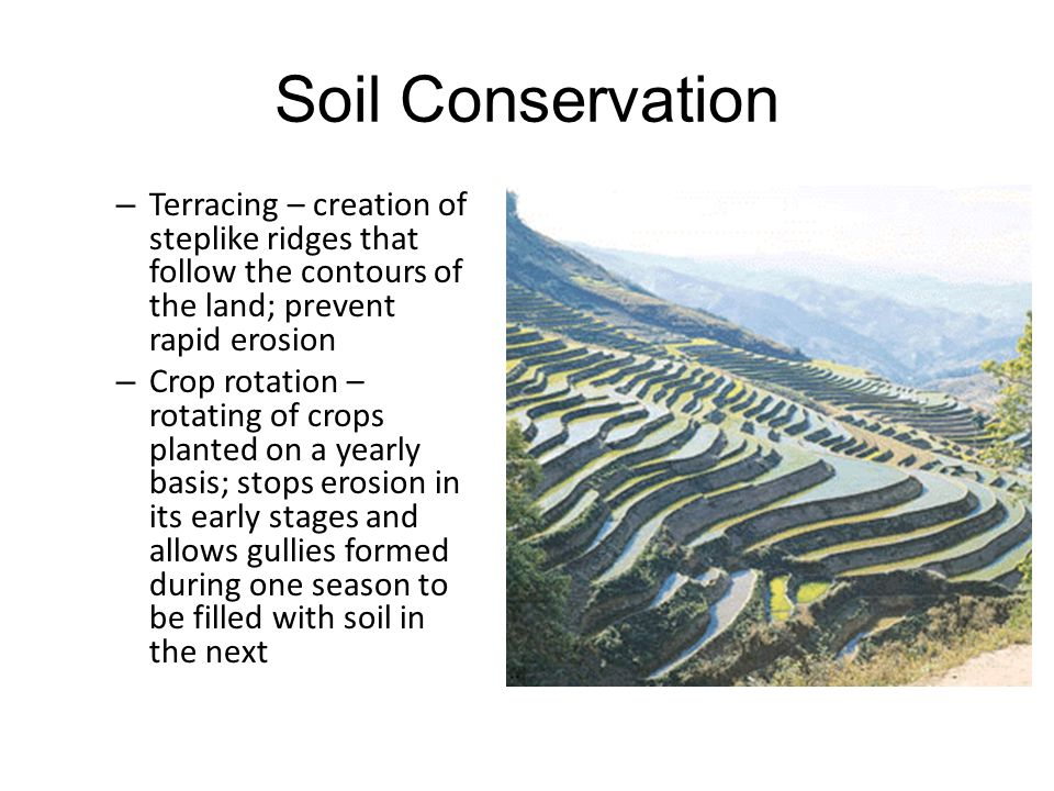 Soil Conservation Terracing – creation of steplike ridges that follow the contours of the land; prevent rapid erosion.