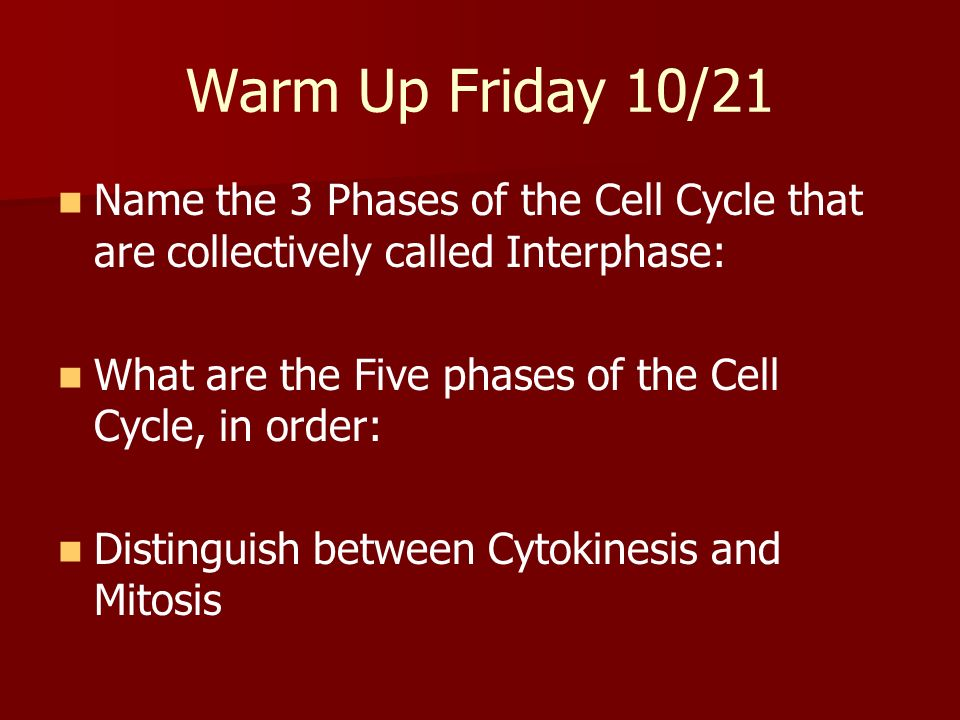 Warm Up Friday 10/21 Name the 3 Phases of the Cell Cycle that are collectively called Interphase: