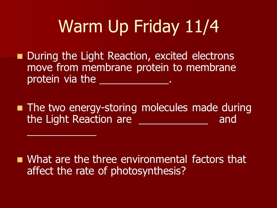 Warm Up Friday 11/4 During the Light Reaction, excited electrons move from membrane protein to membrane protein via the ____________.