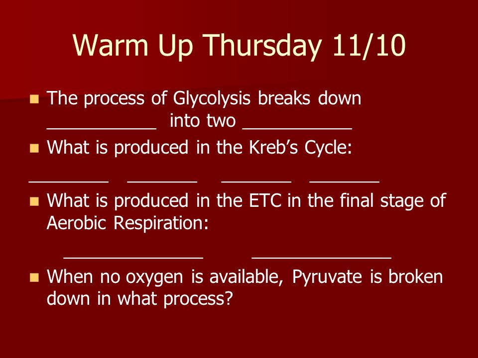 Warm Up Thursday 11/10 The process of Glycolysis breaks down ___________ into two ___________. What is produced in the Kreb's Cycle: