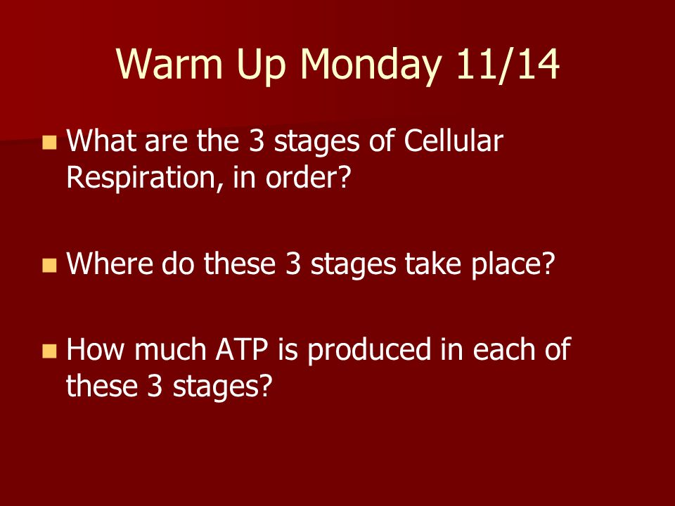 Warm Up Monday 11/14 What are the 3 stages of Cellular Respiration, in order Where do these 3 stages take place