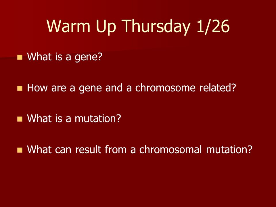 Warm Up Thursday 1/26 What is a gene