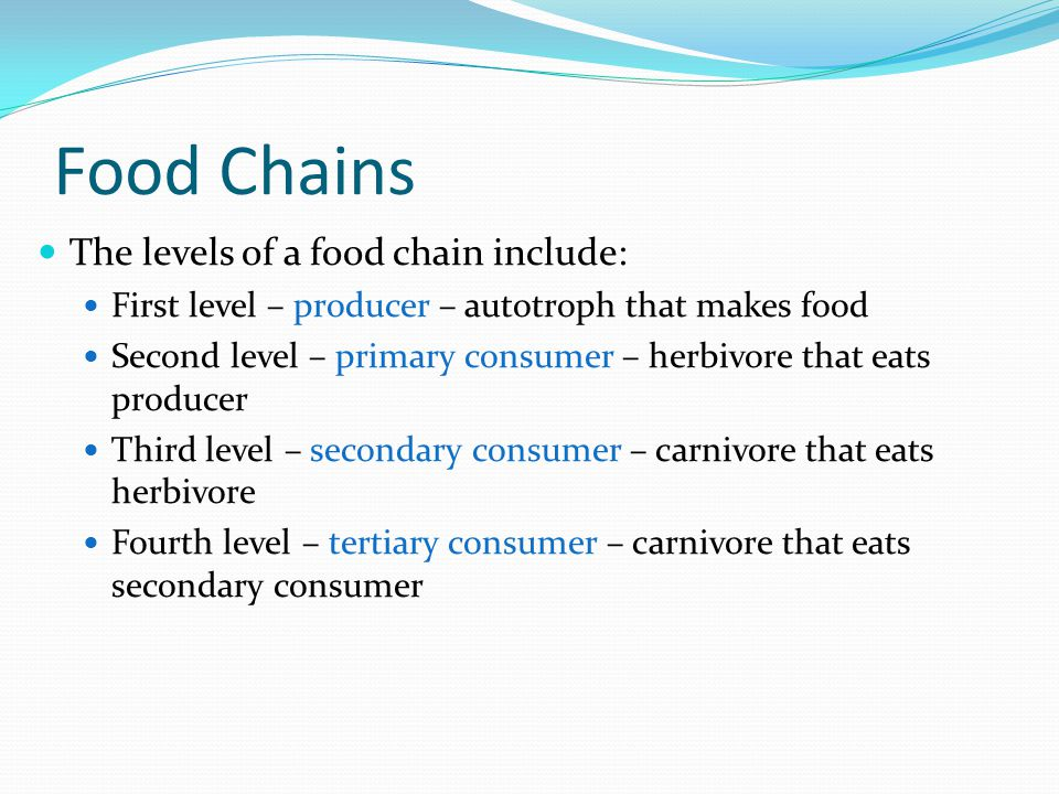 Food Chains The levels of a food chain include: