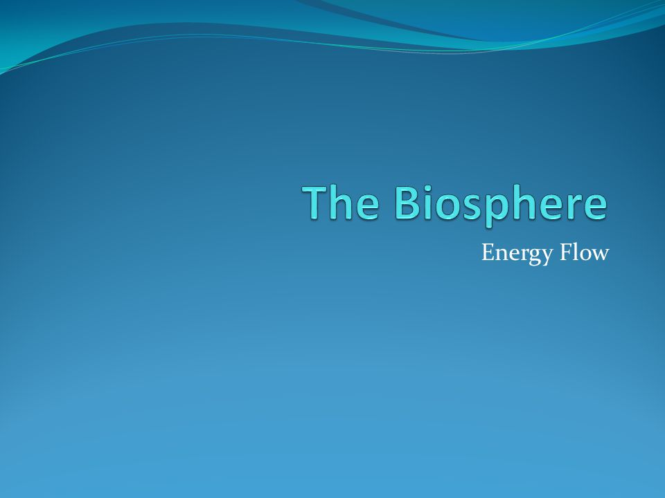 The Biosphere Energy Flow