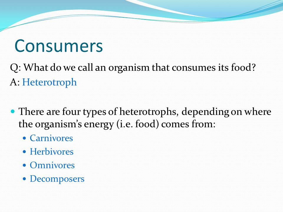 Consumers Q: What do we call an organism that consumes its food