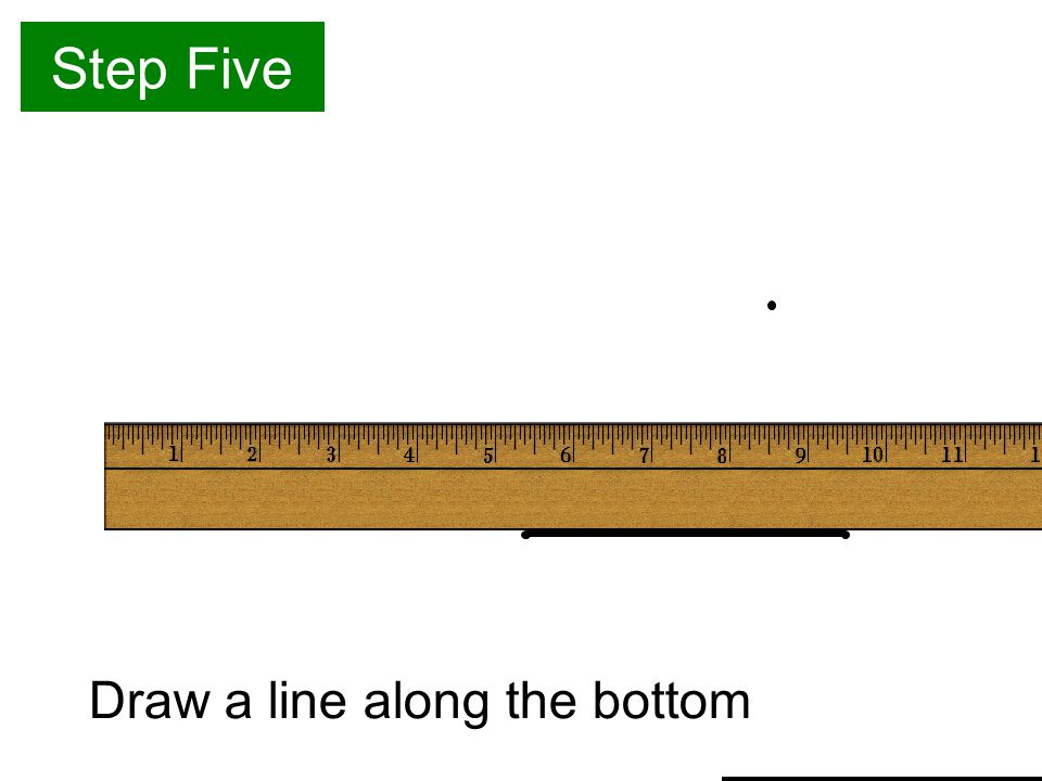 Step Five Draw a line along the bottom