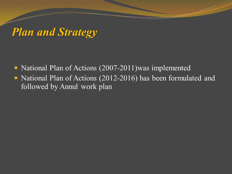 Plan and Strategy National Plan of Actions (2007-2011)was implemented