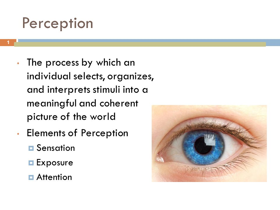 Perception The process by which an individual selects, organizes, and interprets stimuli into a meaningful and coherent picture of the world.
