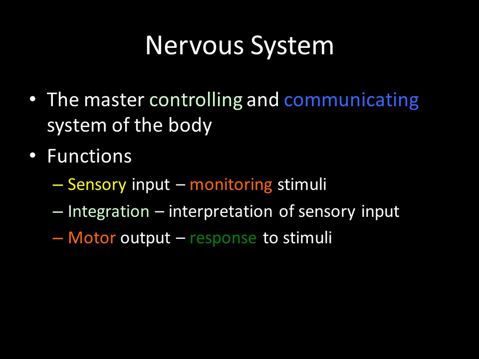Nervous System The master controlling and communicating system of the body. Functions. Sensory input – monitoring stimuli.