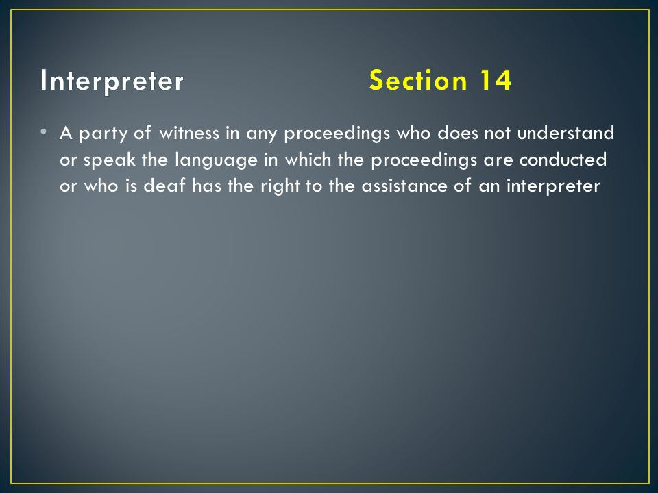 Interpreter Section 14