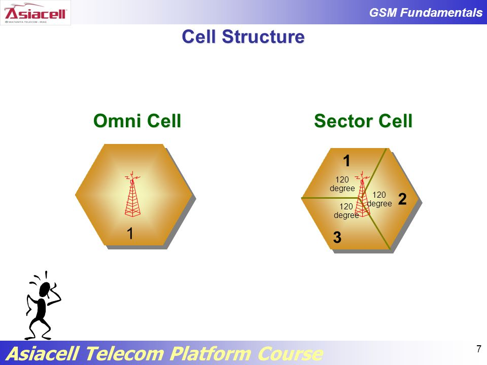 Cell Structure Omni Cell Sector Cell