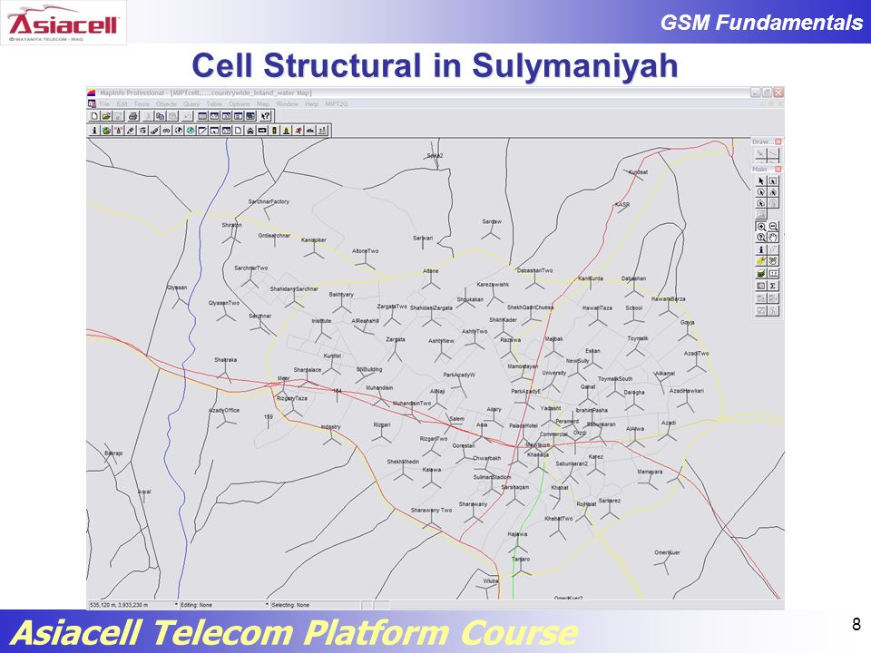Cell Structural in Sulymaniyah