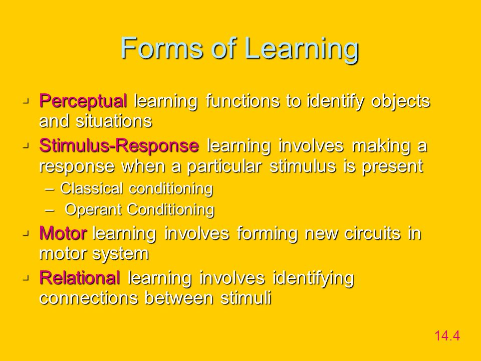 Forms of Learning Perceptual learning functions to identify objects and situations.