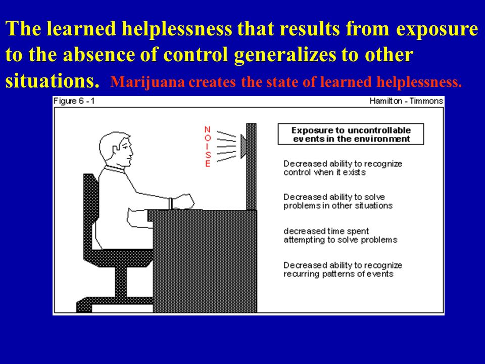 The learned helplessness that results from exposure to the absence of control generalizes to other situations.