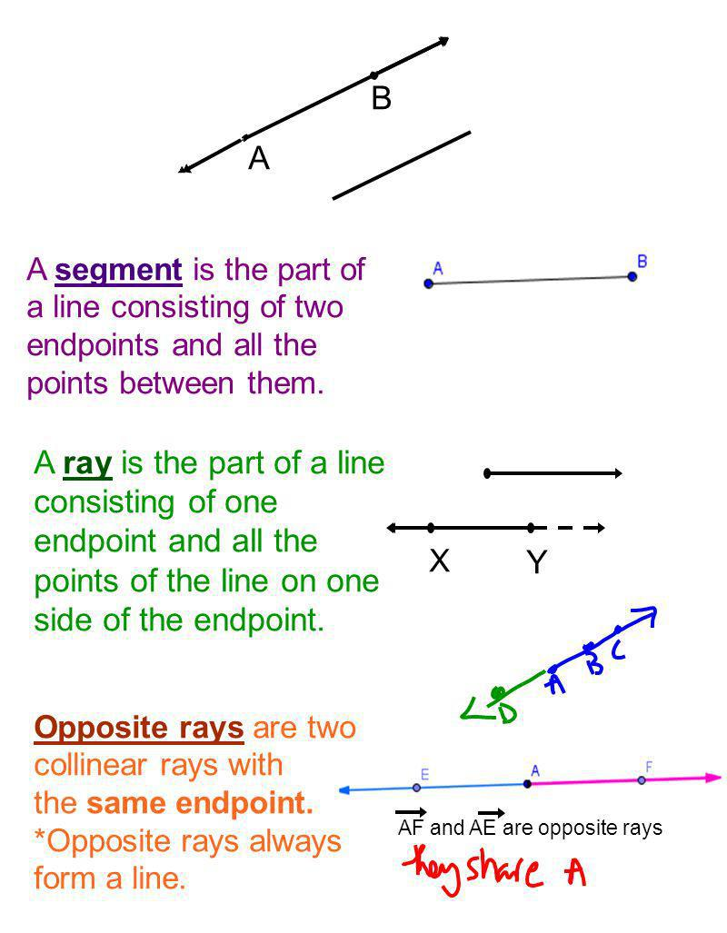 B A. A segment is the part of a line consisting of two endpoints and all the points between them.