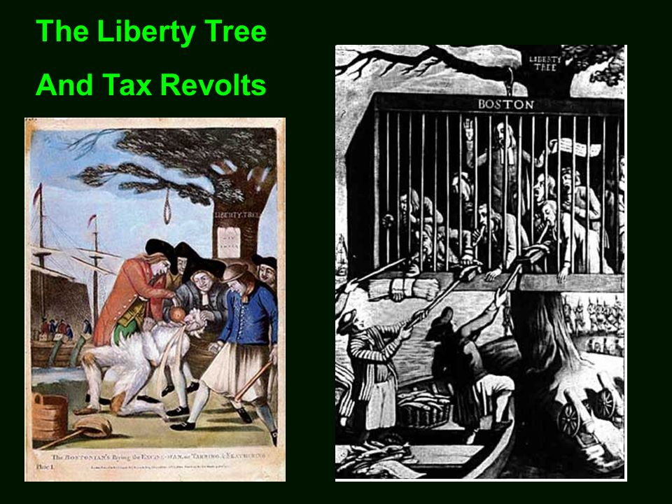 The Liberty Tree And Tax Revolts