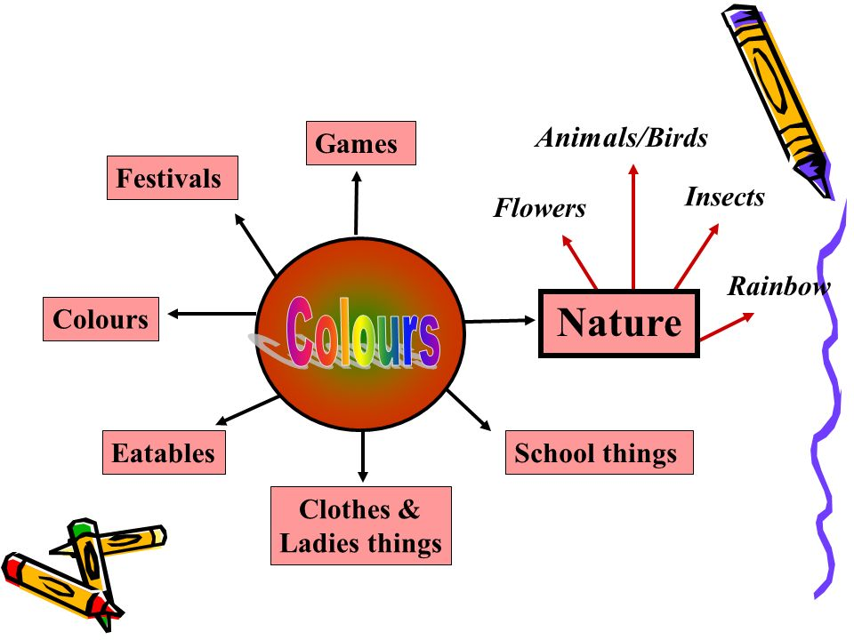 Colours Nature Animals/Birds Games Festivals Insects Flowers Rainbow