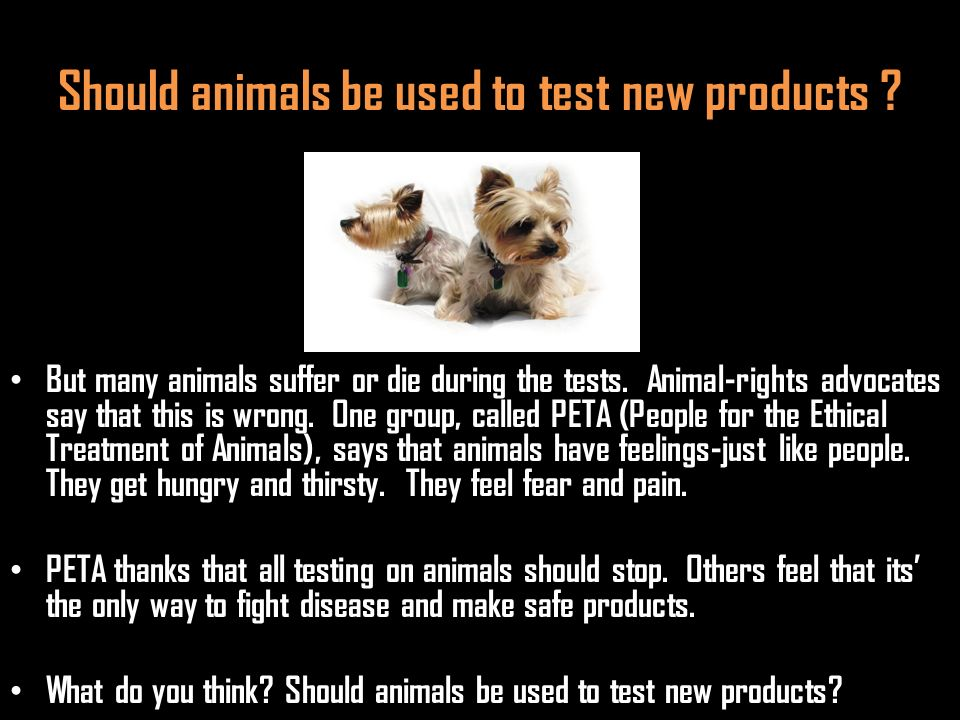 Should animals be used to test new products