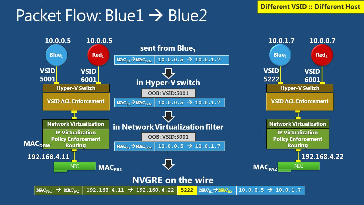 Packet Flow: Blue1  Blue2
