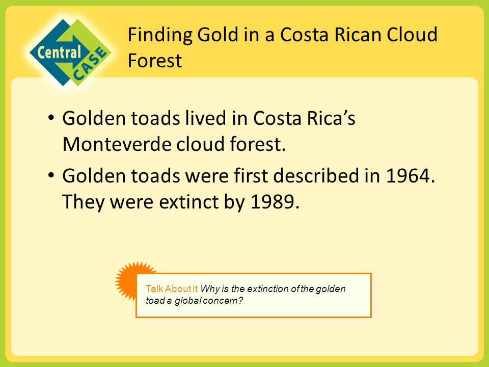 Finding Gold in a Costa Rican Cloud Forest