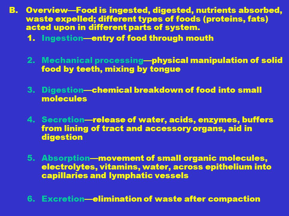B. Overview—Food is ingested, digested, nutrients absorbed, waste expelled; different types of foods (proteins, fats) acted upon in different parts of system.