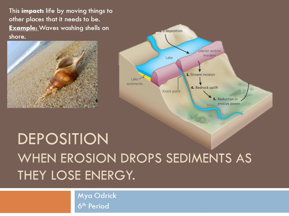 Deposition When erosion drops sediments as they lose energy.