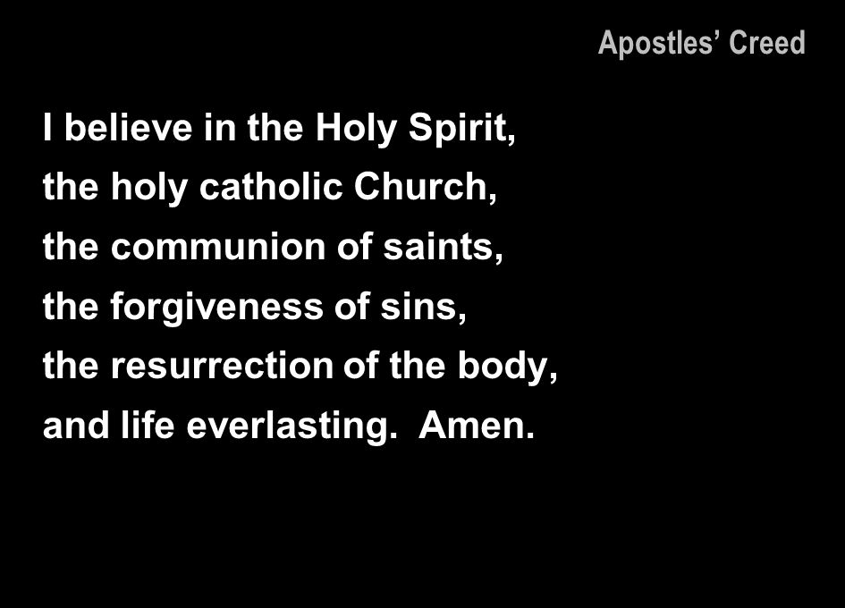 I believe in the Holy Spirit, the holy catholic Church,