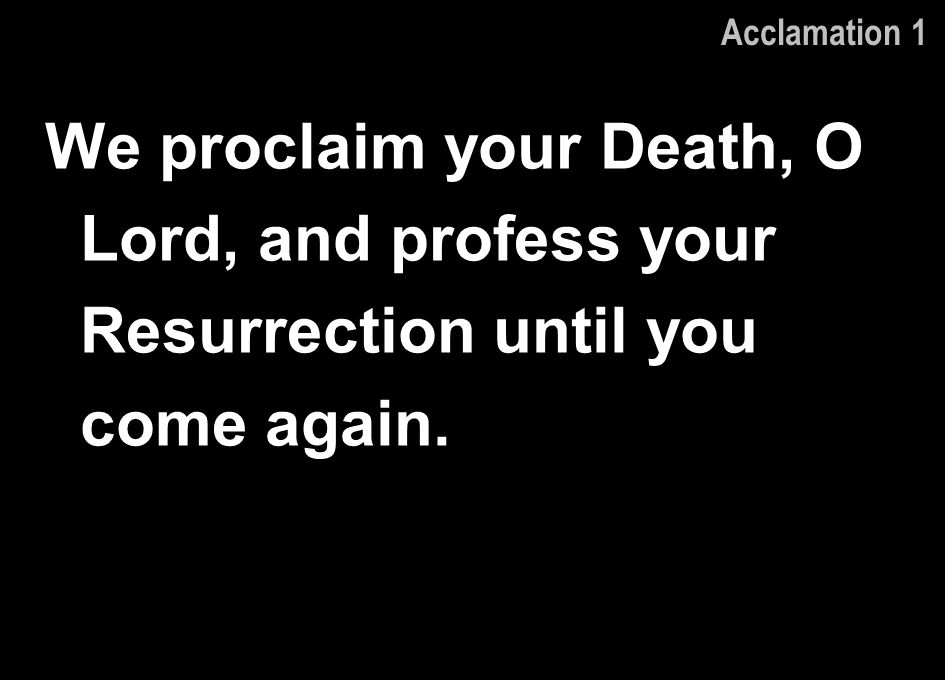 Acclamation 1 We proclaim your Death, O Lord, and profess your Resurrection until you come again.