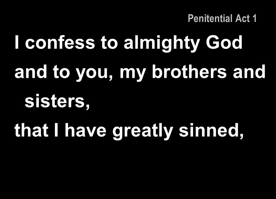 I confess to almighty God and to you, my brothers and sisters,