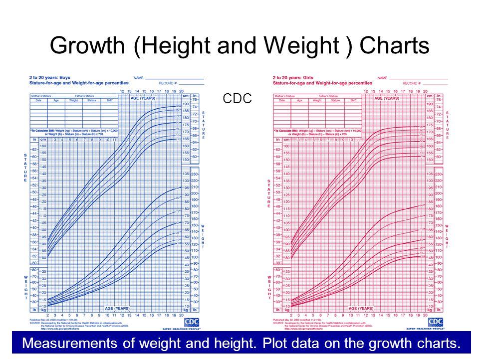 girls-pussy-growth-chart-jungle
