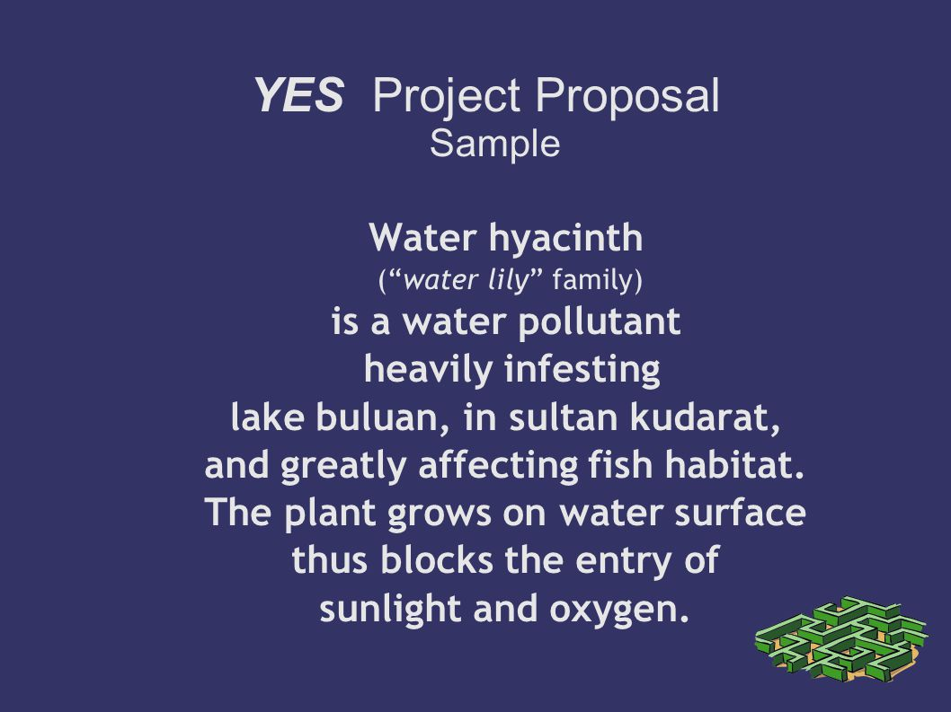 YES Project Proposal Sample - ppt download