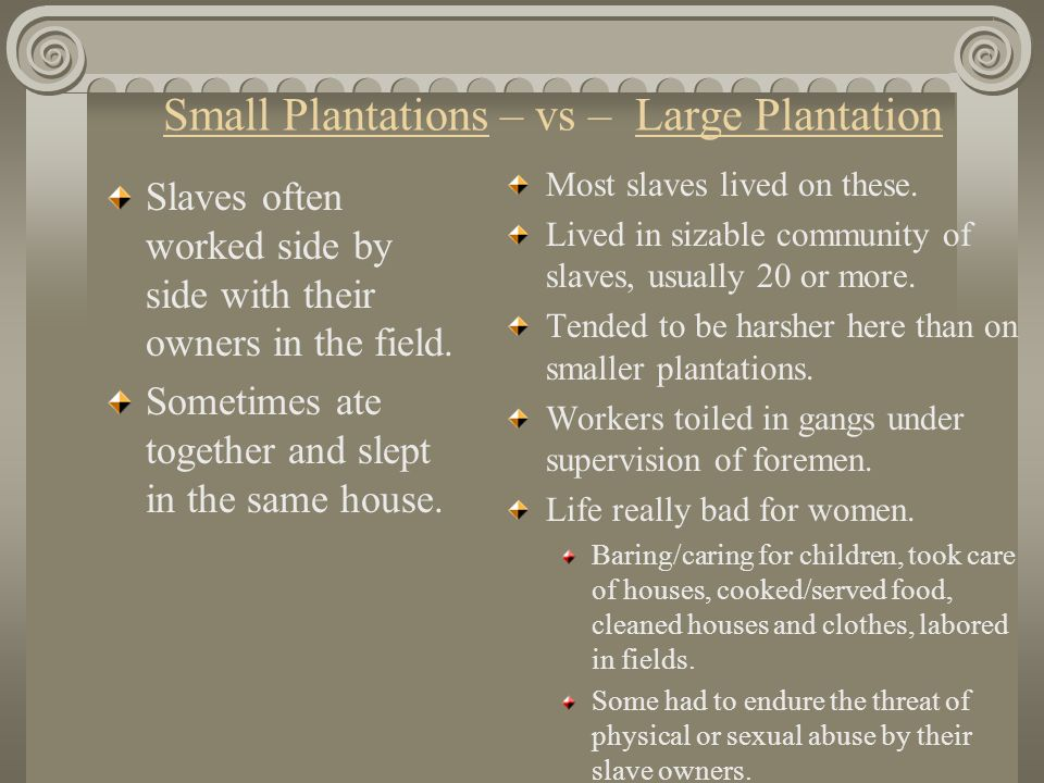 Small Plantations – vs – Large Plantation